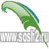 Сайт Григорополисской средней школы №2